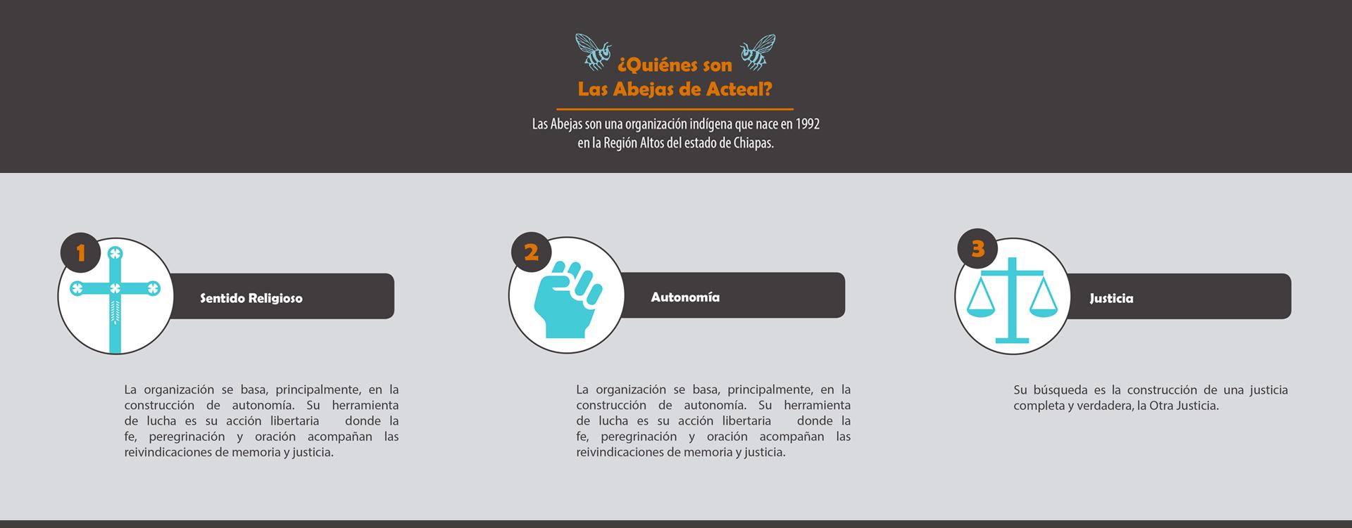 Micrositio / Desplazamiento forzado y resistencia de Las Abejas
